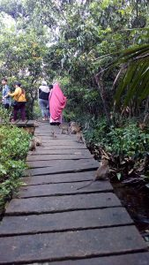 Wisata Pulau Kembang